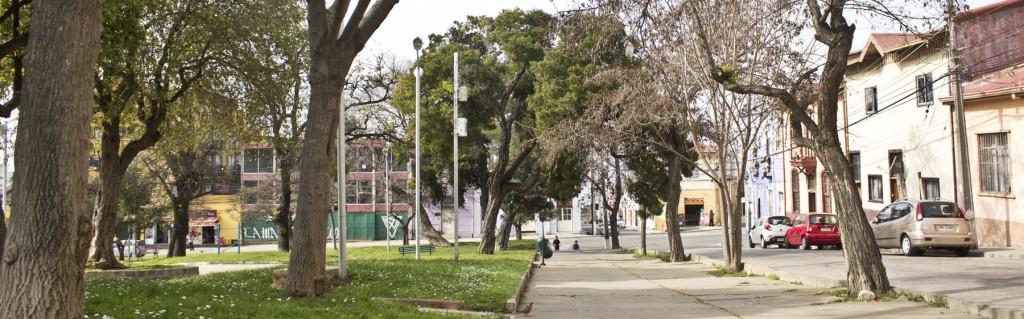 plaza waddington